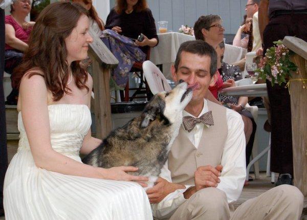 wedding_ro