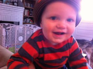 Oscar at 11 months, attacking camera